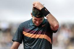 Del Potro baja ante Federer, por lesión, y lo reemplaza Zverev