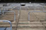 La primera y segunda división portuguesa, a puerta cerrada este fin de semana